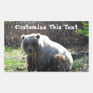 La comida campestre del oso de peluche; Personaliz Rectangular Pegatina