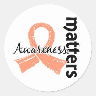 La conciencia importa el cáncer endometrial 7 pegatina redonda