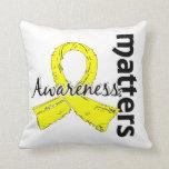 La conciencia importa la endometriosis 7 almohada