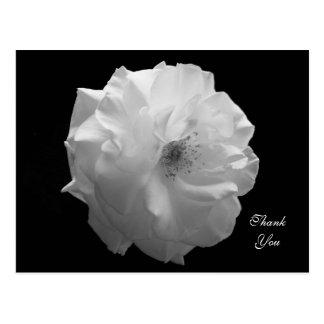 La condolencia color de rosa le agradece postal