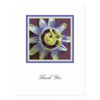 La condolencia de la flor de la pasión le agradece tarjeta postal