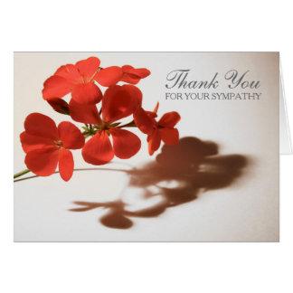 La condolencia del geranio 3 le agradece tarjeta