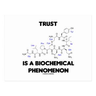 La confianza es un fenómeno bioquímico (la tarjeta postal