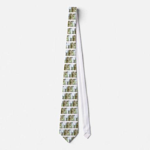 La corbata de los hombres de las orquídeas que cue