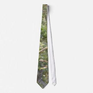 La corbata de los hombres del limo de la charca de