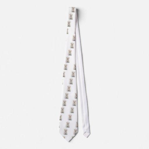 La corbata de los hombres lindos de Bichon Frise
