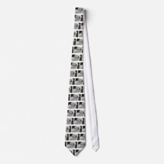 La corbata de los hombres malteses blancos del per