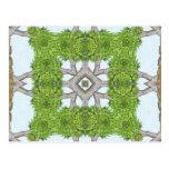 La corteza sale del arte de piedra 8 del caleidosc tarjetas postales