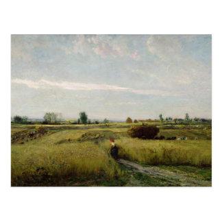 La cosecha, 1851 postal