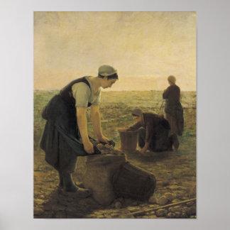 La cosecha de la patata impresiones