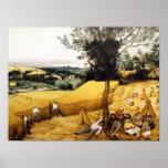 La cosecha de maíz - 1565 poster