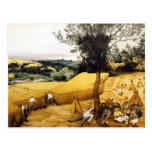 La cosecha de maíz - 1565 tarjeta postal