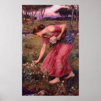 La cosecha del narciso florece el poster