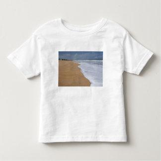 La costa auxiliar, ruta de esclavos encamina el t shirts