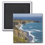 La costa costa grande de Sur en California, los E. Imán Cuadrado