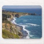 La costa costa grande de Sur en California, los E. Alfombrillas De Ratones