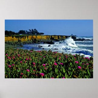 La costa de California florece el poster