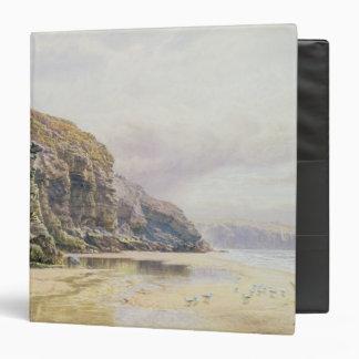 """La costa de Cornualles Carpeta 1 1/2"""""""