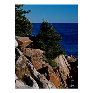 La costa rocosa de Maine Impresiones