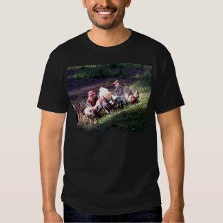 La cuadrilla del gallo camisas