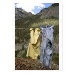 la cuerda para tender la ropa postales