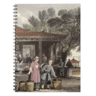 La cultura y la preparación del té, de 'China aden Libro De Apuntes