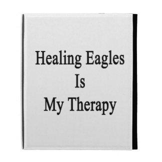 La cura de Eagles es mi terapia