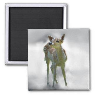 La curiosidad del ciervo del bebé imán cuadrado
