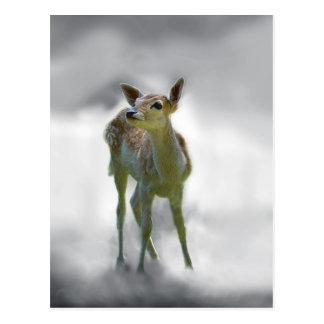La curiosidad del ciervo del bebé postal