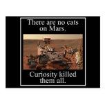 La curiosidad Rover de la NASA y ningunos gatos en Tarjeta Postal
