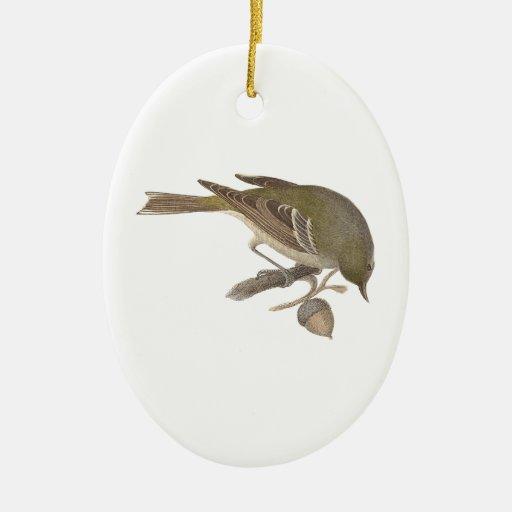 La curruca del pino (pinus de Sylvicola) Ornamento Para Reyes Magos