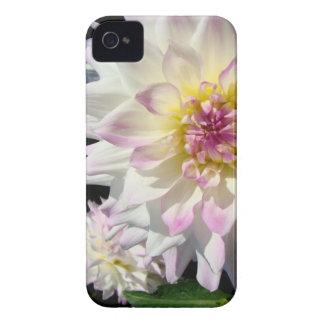 La dalia florece las cajas de la curva de Blackber iPhone 4 Case-Mate Cobertura
