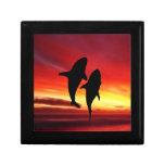 La danza de las ballenas en la puesta del sol caja de joyas