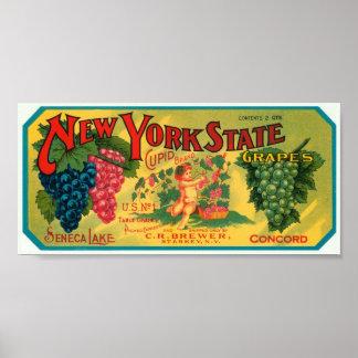 La del cajón del vintage de las uvas del lago Sene Poster
