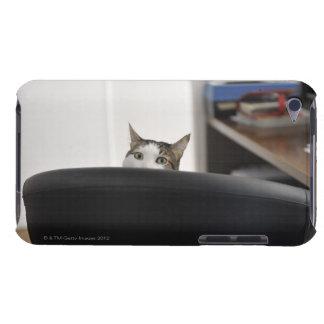 La demostración principal del gato de una silla de iPod Case-Mate cárcasa