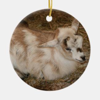 La derecha doeling del bebé de la pequeña cabra adorno redondo de cerámica