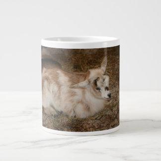 La derecha doeling del bebé de la pequeña cabra pe taza jumbo