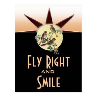 La derecha y sonrisa de la mosca tarjetas postales