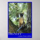 La dignidad está dentro de usted impresiones