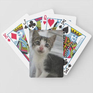 La diversión del gatito del bebé embroma baraja