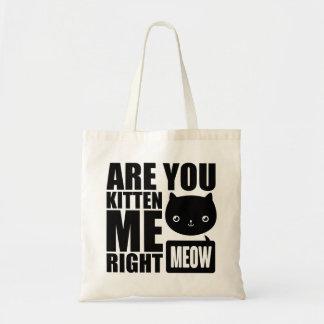 La diversión divertida es usted gatito yo la bolsa