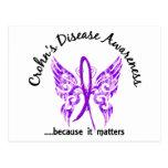La enfermedad de Crohn de la mariposa 6,1 del tatu Tarjeta Postal