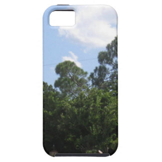 La entrada iPhone 5 Case-Mate carcasa