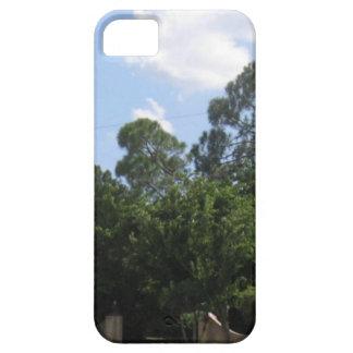 La entrada iPhone 5 Case-Mate funda