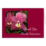 La entrevista rosada de la orquídea le agradece ca felicitaciones