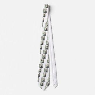 La escoba de bruja corbata