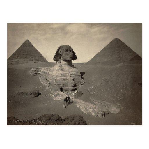 La esfinge de Giza excavada parcialmente Tarjetas Postales