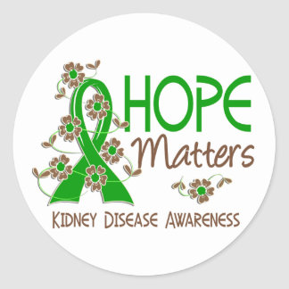 La esperanza importa enfermedad de riñón 3 pegatina redonda
