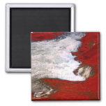 La espuma blanca detiene al río de lava roja iman de nevera