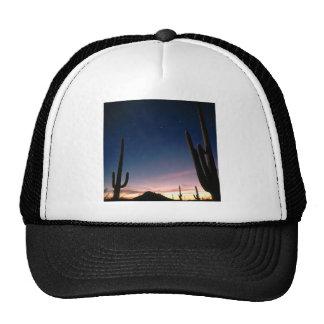 La estrella de los desiertos arrastra el Saguaro A Gorro De Camionero